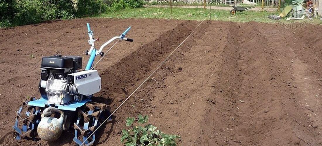 подготовка грядок под посадку земляники
